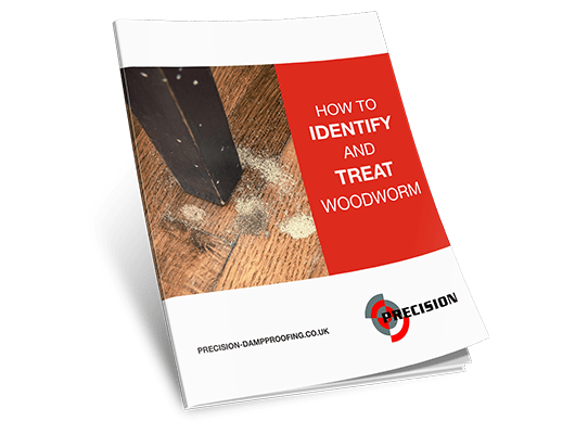 How-To-Identify-and-Treat-Woodworm